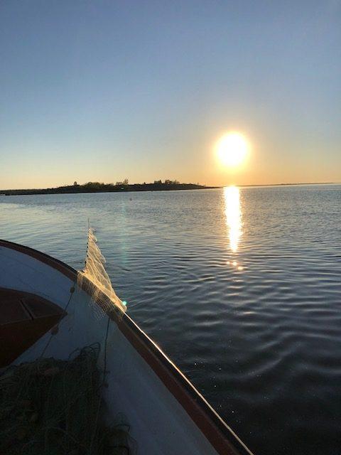 Fisket efter strömming till 2019 års Grand Kallax Original Surströmming